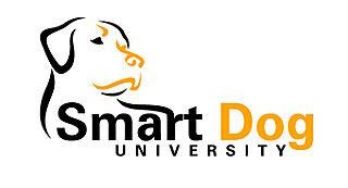 Smartdog_rgb