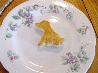W_breakfast_dog_biscuit