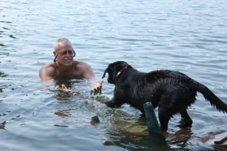 Caysun, black Labrador pup, learning to swim. She's a service dog in training.