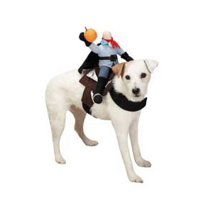 Step 3 Show the costume to your dog and let him smell it.  sc 1 st  Smart Dog University & How to Dress Your Dog in a Costume for Halloween - Smart Dog University