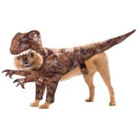 Pet360raptor