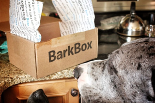 BarkBox for dogs, subscription box for dogs, gift for dogs,